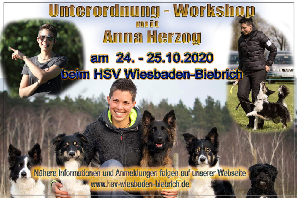 Workshop mit Anna Herzog